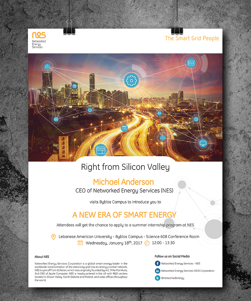 Networked Energy Services - NES